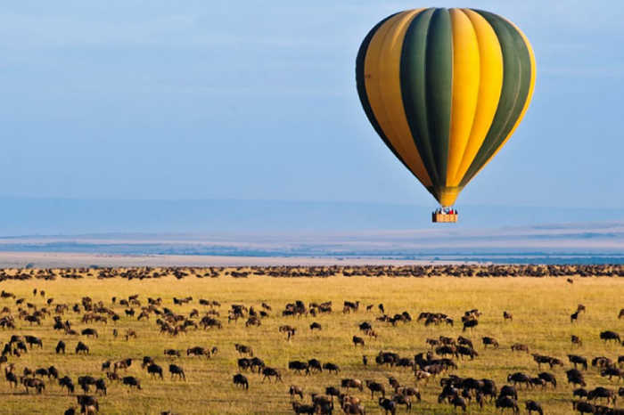 The Great Migration of Africa (Land Only)